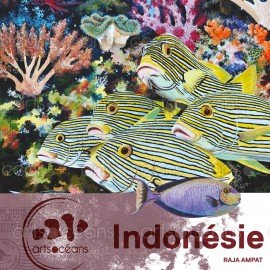 Scuba Divers Log Book to Raja Ampat